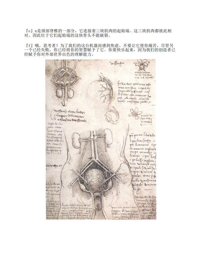 达·芬奇笔记